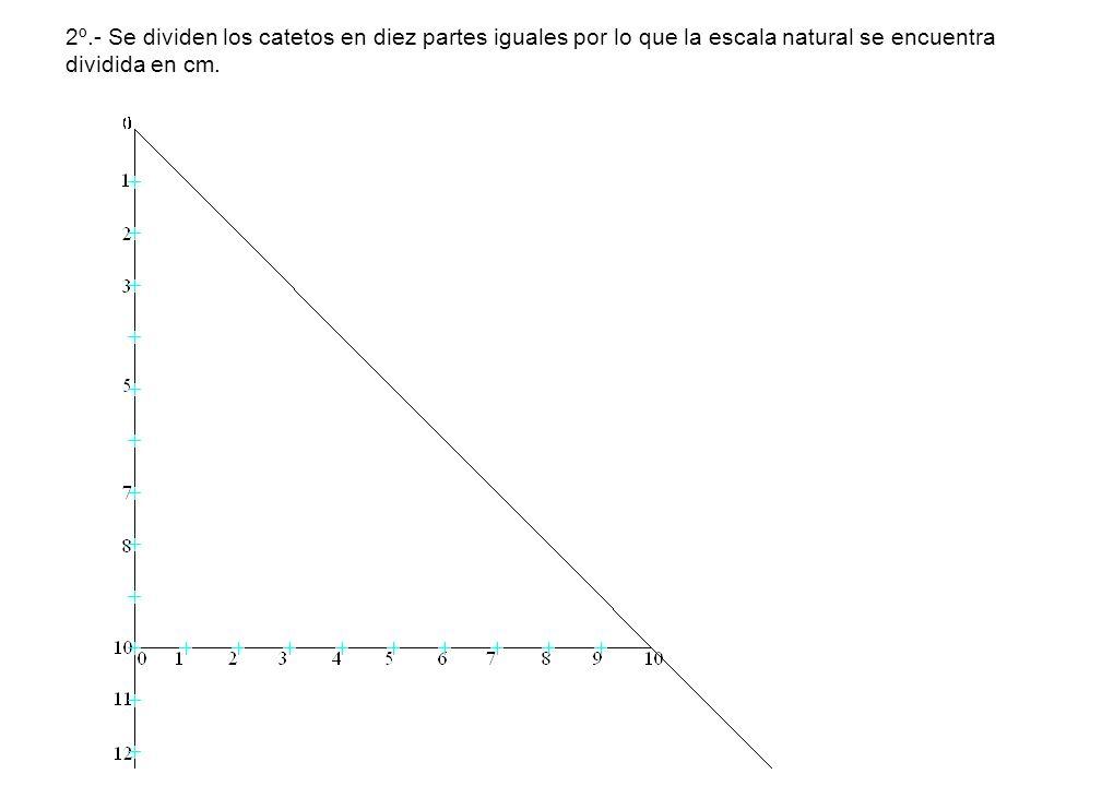 2º.- Se dividen los catetos en diez partes iguales por lo que la escala natural se encuentra dividida en cm.