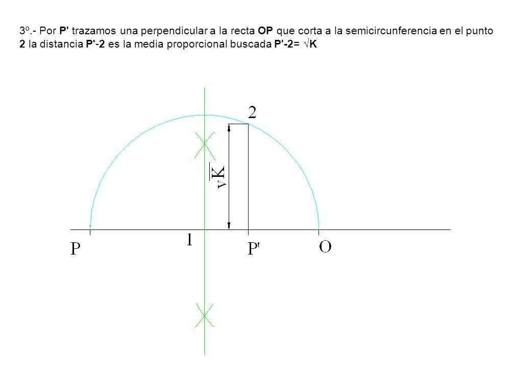 3º.- Por P' trazamos una perpendicular a la recta OP que corta a la semicircunferencia en el punto 2 la distancia P'-2 es la media proporcional buscad
