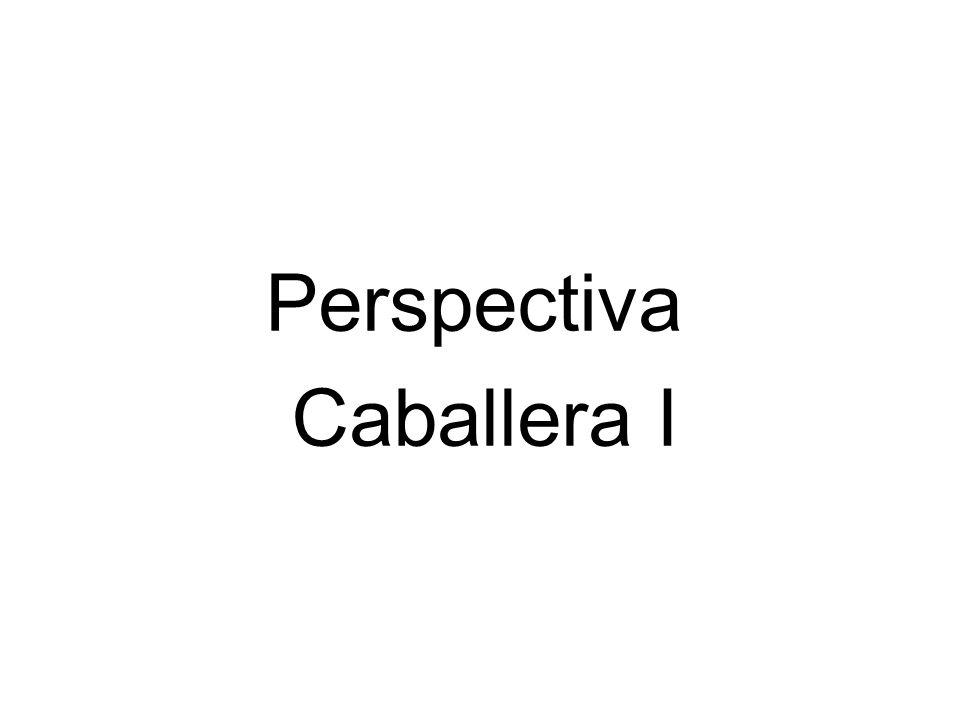 Perspectiva Caballera I