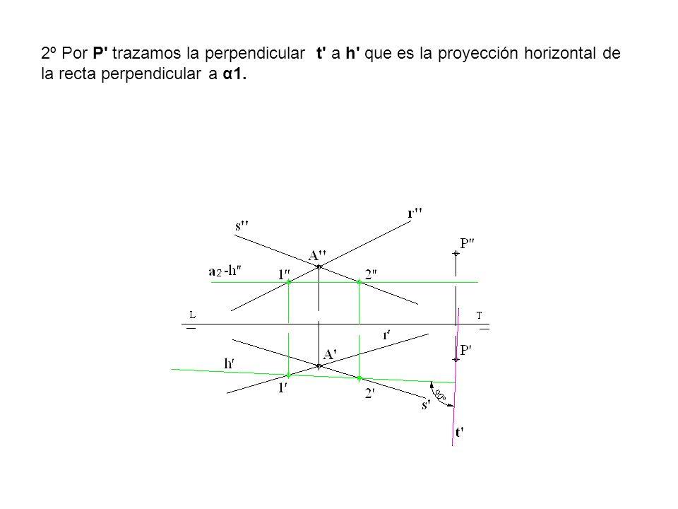 2º Por P' trazamos la perpendicular t' a h' que es la proyección horizontal de la recta perpendicular a α1.