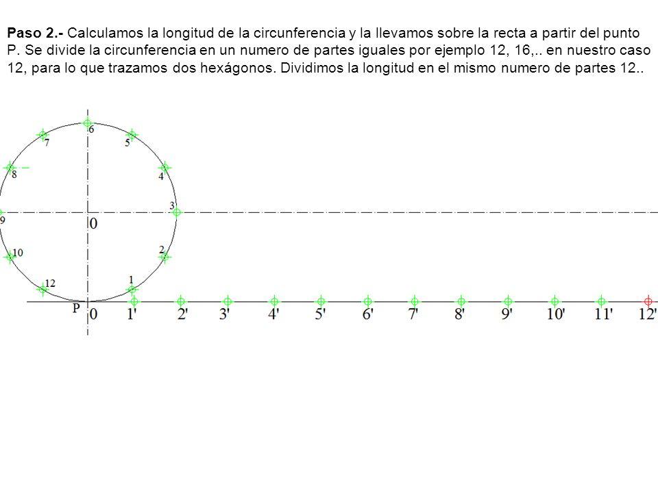 Paso 2.- Calculamos la longitud de la circunferencia y la llevamos sobre la recta a partir del punto P. Se divide la circunferencia en un numero de pa