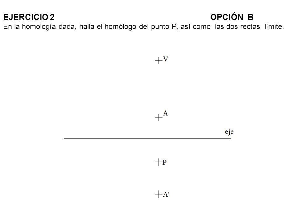 EJERCICIO 2OPCIÓN B En la homología dada, halla el homólogo del punto P, así como las dos rectas límite.