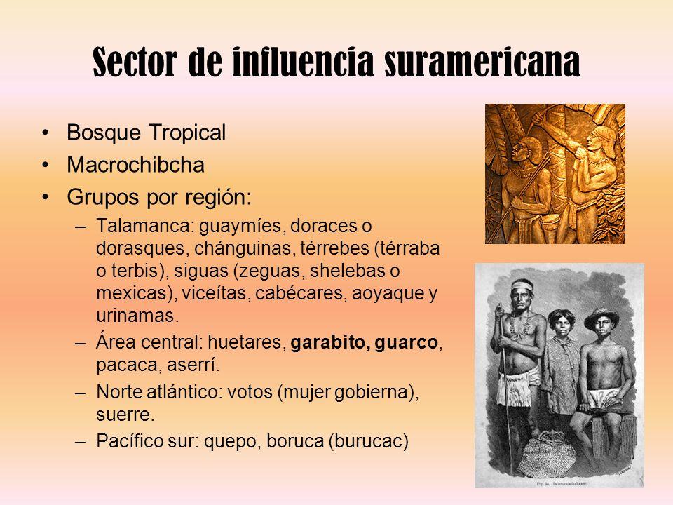 Sector de influencia suramericana Bosque Tropical Macrochibcha Grupos por región: –Talamanca: guaymíes, doraces o dorasques, chánguinas, térrebes (tér