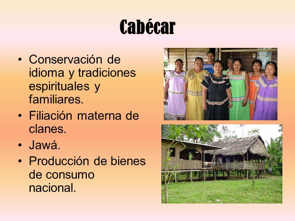 Cabécar Conservación de idioma y tradiciones espirituales y familiares. Filiación materna de clanes. Jawá. Producción de bienes de consumo nacional.