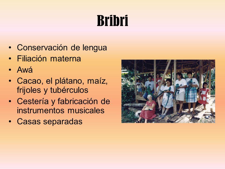 Bribri Conservación de lengua Filiación materna Awá Cacao, el plátano, maíz, frijoles y tubérculos Cestería y fabricación de instrumentos musicales Ca
