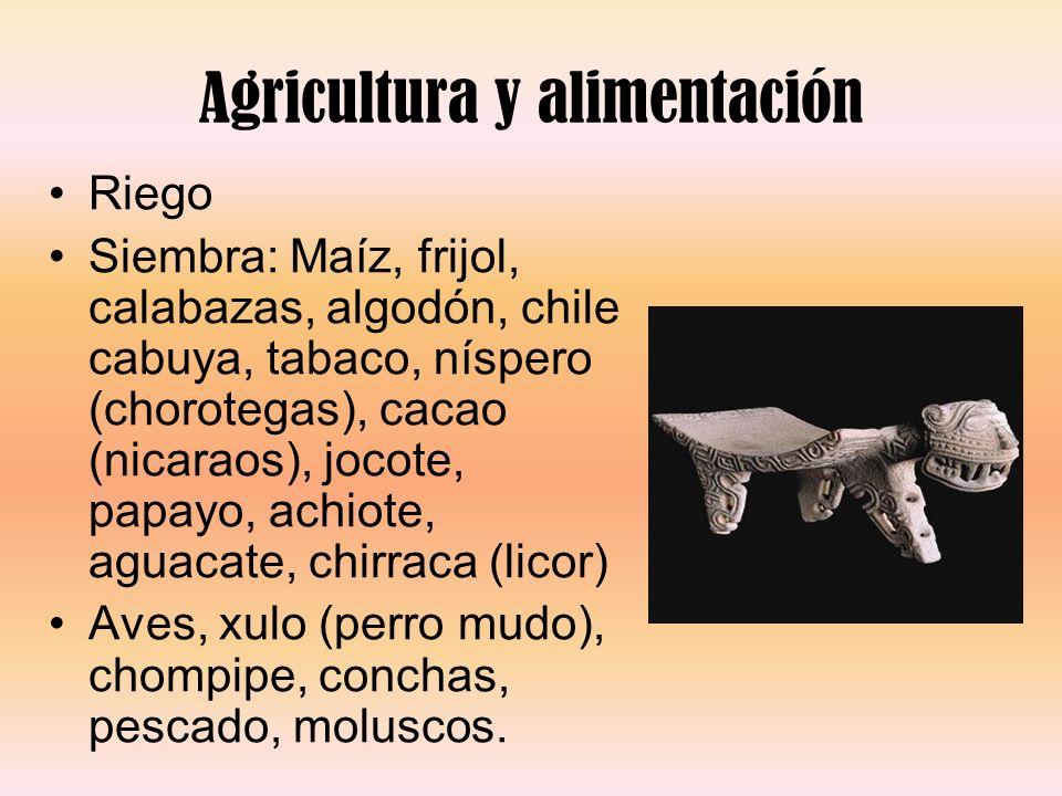 Agricultura y alimentación Riego Siembra: Maíz, frijol, calabazas, algodón, chile cabuya, tabaco, níspero (chorotegas), cacao (nicaraos), jocote, papa