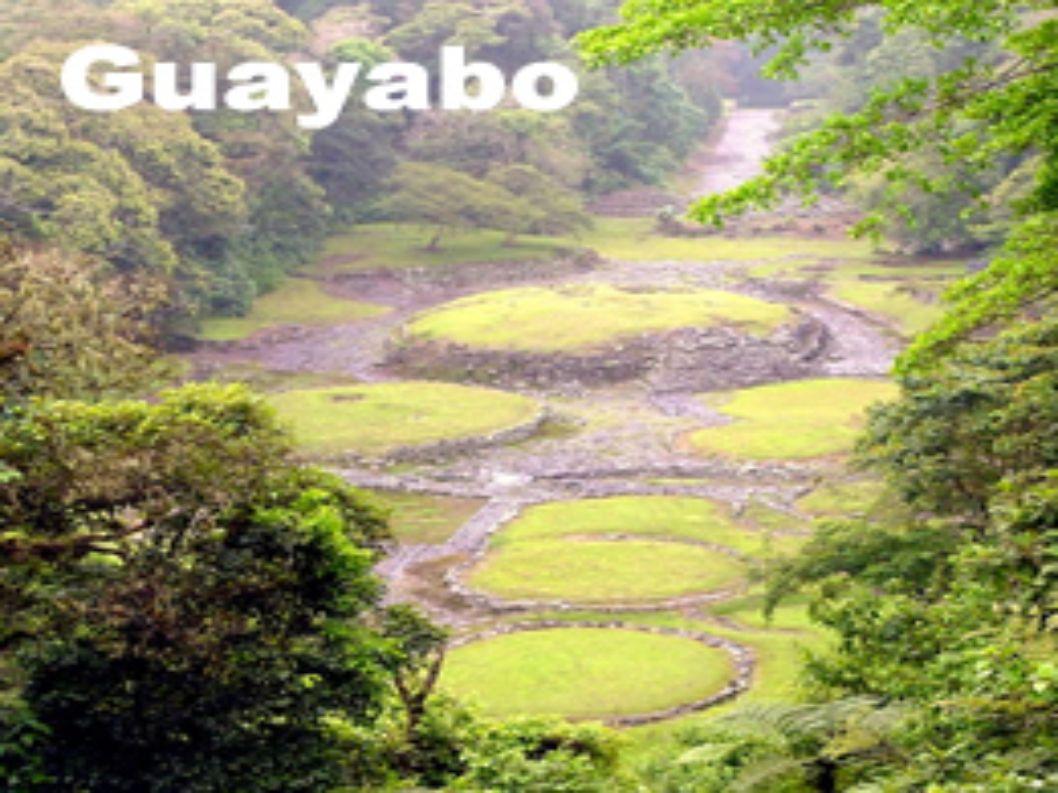 Esferas * En 1979 se encontró una de estas piedras en Guayabo de Turrialba la cual pudo haber tenido la función de calendario de precisión y que junto al uso de objetos astronómicos de poca magnitud, daba detalles de fechas como los solsticios, el día más largo del año y la duración de la época de lluvias.