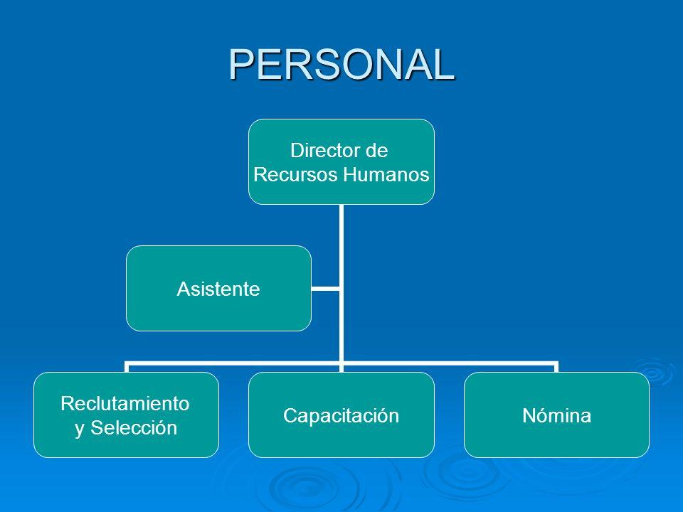 PERSONAL Director de Recursos Humanos Reclutamiento y Selección CapacitaciónNómina Asistente