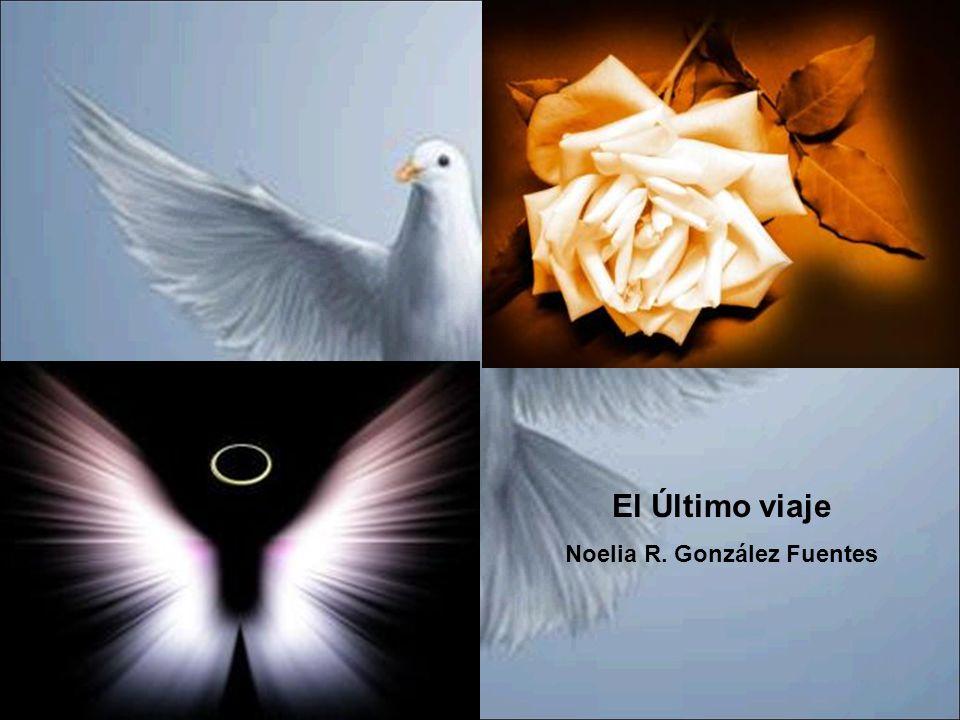 PRODUCTOS PRECIO VENTA PUBLICO FLORES 820,80 NICHO, TUMBA 8.236,80 FERETRO 2.421 RECORDATORIO 625 TANATORIO 2.314 SERVICIO FUNERAL 7.488 SERVCIOS RELIGIOSOS180 GASTOS ADMINISTRATIVOS1796.4 ESQUELAS 378 TOTAL BENEFICIOS 24.260