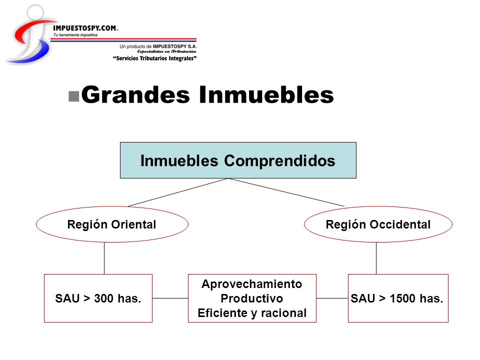 Grandes Inmuebles Inmuebles Comprendidos Región OrientalRegión Occidental SAU > 300 has. Aprovechamiento Productivo Eficiente y racional SAU > 1500 ha