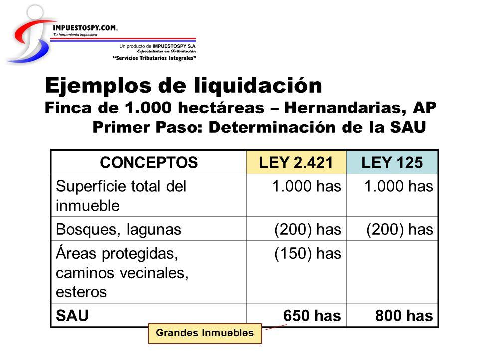 Ejemplos de liquidación Finca de 1.000 hectáreas – Hernandarias, AP Primer Paso: Determinación de la SAU CONCEPTOSLEY 2.421LEY 125 Superficie total de