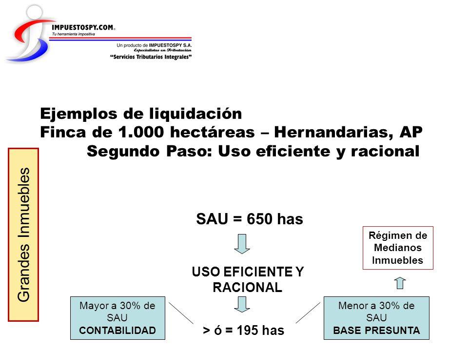 Ejemplos de liquidación Finca de 1.000 hectáreas – Hernandarias, AP Segundo Paso: Uso eficiente y racional Grandes Inmuebles Mayor a 30% de SAU CONTAB