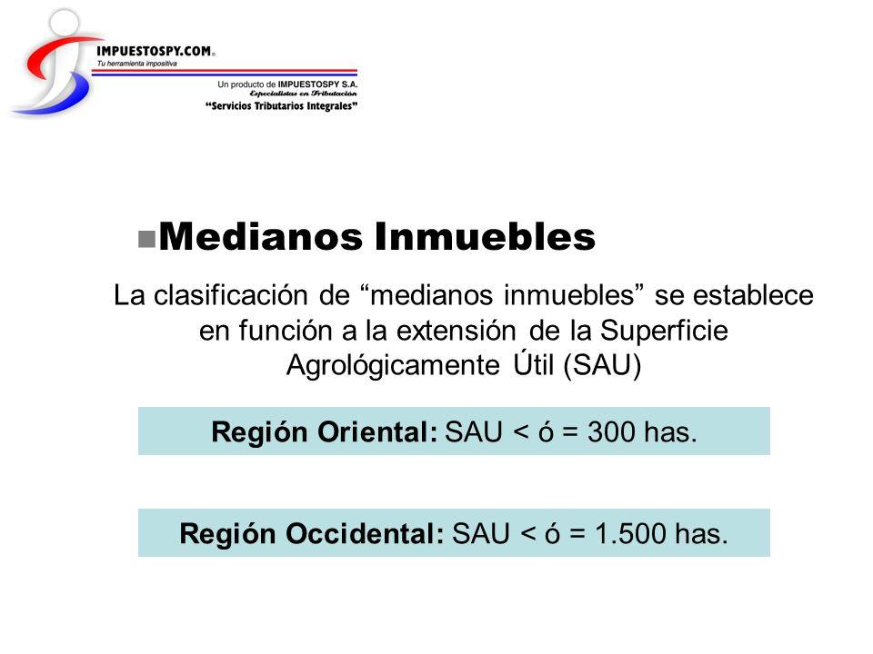 Medianos Inmuebles La clasificación de medianos inmuebles se establece en función a la extensión de la Superficie Agrológicamente Útil (SAU) Región Or