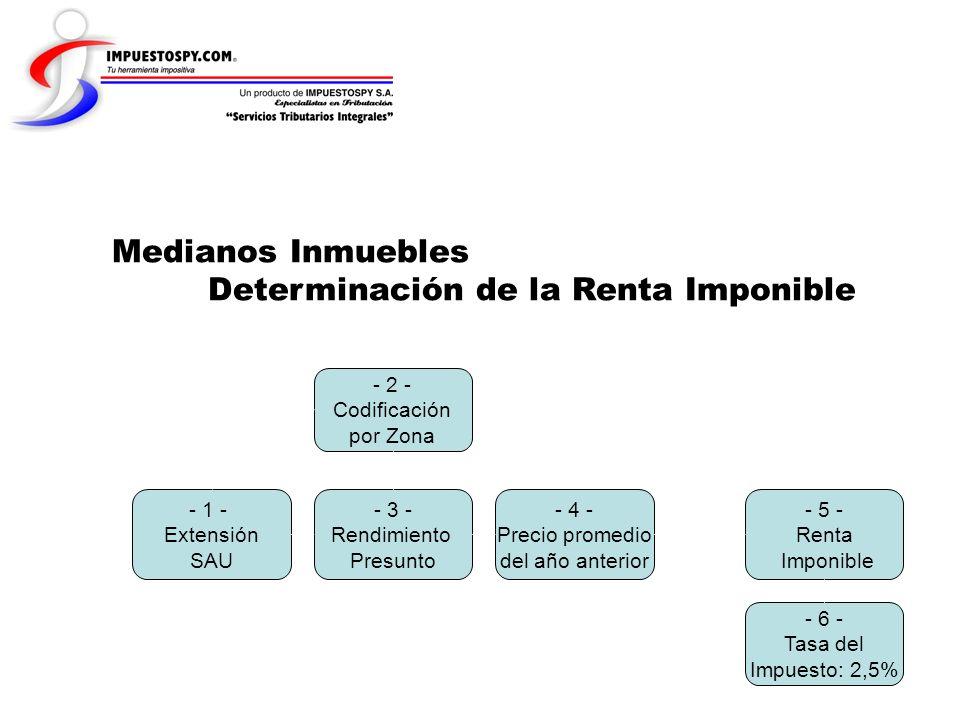Medianos Inmuebles Determinación de la Renta Imponible - 1 - Extensión SAU - 2 - Codificación por Zona - 3 - Rendimiento Presunto - 4 - Precio promedi