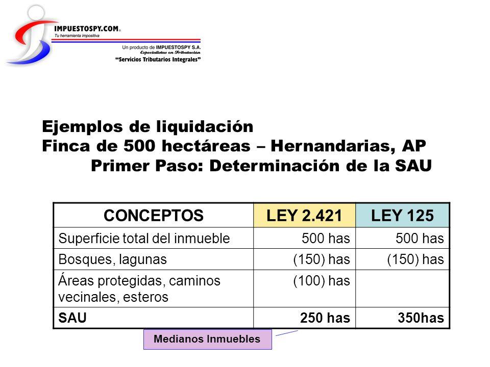 Ejemplos de liquidación Finca de 500 hectáreas – Hernandarias, AP Primer Paso: Determinación de la SAU CONCEPTOSLEY 2.421LEY 125 Superficie total del