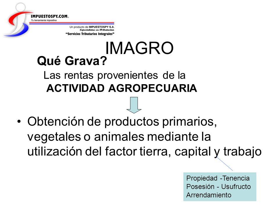 Medianos Inmuebles Determinación de la Renta Imponible (Base Presunta) La renta imponible se determina aplicando la producción presunta a la extensión de la superficie agrológicamente útil.