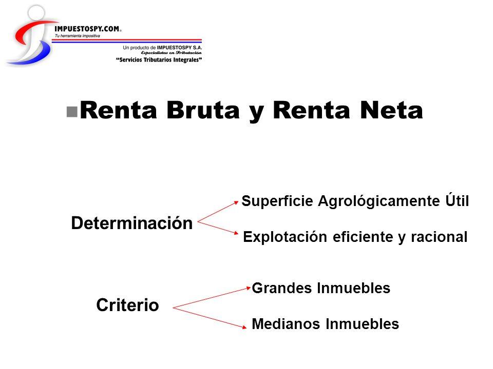 Renta Bruta y Renta Neta Determinación Superficie Agrológicamente Útil Explotación eficiente y racional Criterio Grandes Inmuebles Medianos Inmuebles