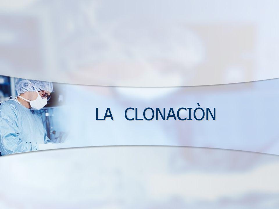 CLONACIÒN DE ORGANISMOS DE FORMA NATURAL La clonación de un organismo es crear un nuevo organismo con la misma información genética que una célula existente.