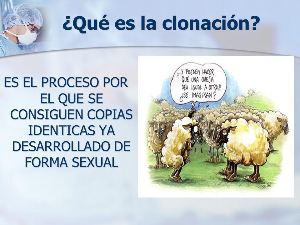 ¿Qué es la clonación? ES EL PROCESO POR EL QUE SE CONSIGUEN COPIAS IDENTICAS YA DESARROLLADO DE FORMA SEXUAL