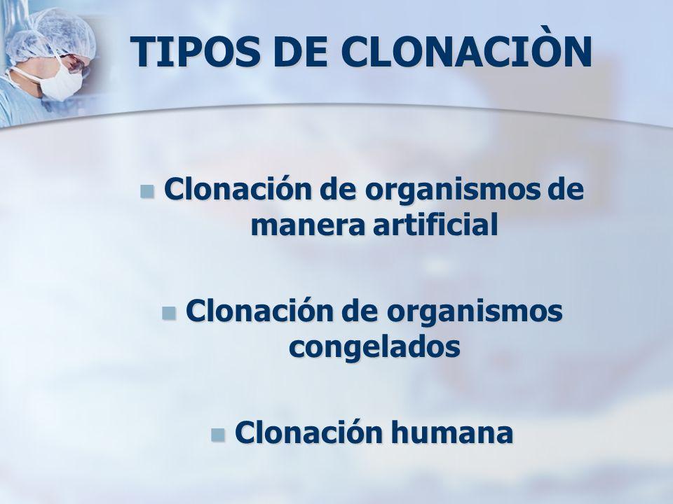 TIPOS DE CLONACIÒN Clonación de organismos de manera artificial Clonación de organismos de manera artificial Clonación de organismos congelados Clonac