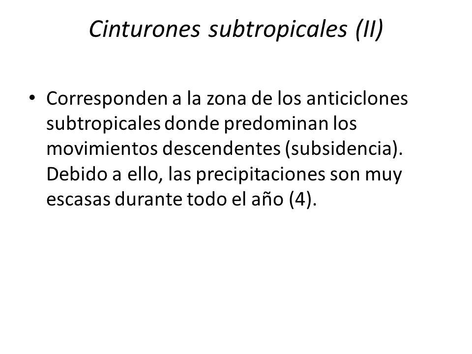 Cinturones subtropicales (II) Corresponden a la zona de los anticiclones subtropicales donde predominan los movimientos descendentes (subsidencia). De