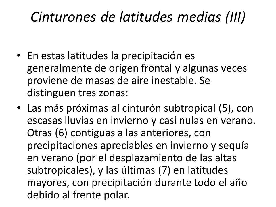 Cinturones de latitudes medias (III) En estas latitudes la precipitación es generalmente de origen frontal y algunas veces proviene de masas de aire i