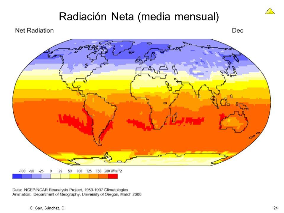 C. Gay, Sánchez, O.24 Radiación Neta (media mensual)