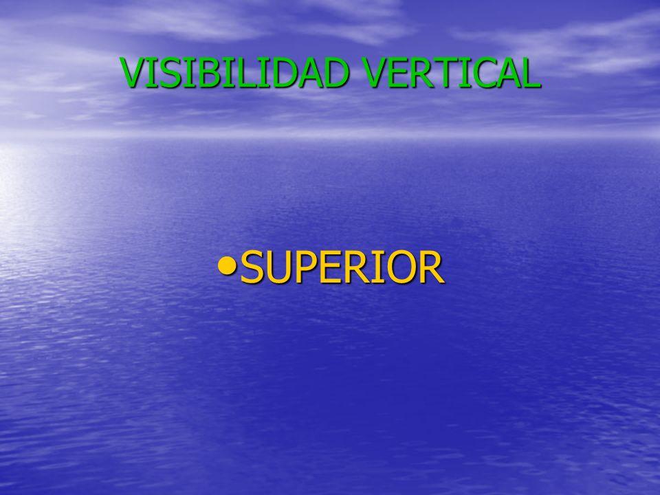 VISIBILIDAD OBLICUA SUPERIOR SUPERIOR INFERIOR INFERIOR