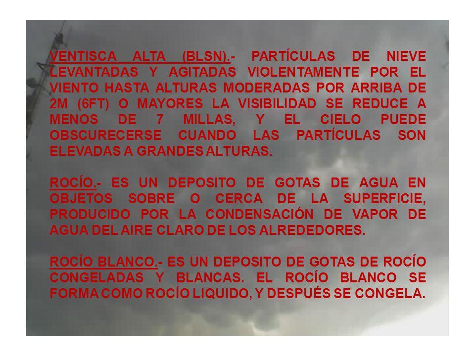 VENTISCA ALTA (BLSN).- PARTÍCULAS DE NIEVE LEVANTADAS Y AGITADAS VIOLENTAMENTE POR EL VIENTO HASTA ALTURAS MODERADAS POR ARRIBA DE 2M (6FT) O MAYORES