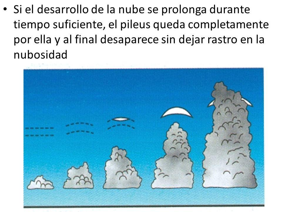 Si el desarrollo de la nube se prolonga durante tiempo suficiente, el pileus queda completamente por ella y al final desaparece sin dejar rastro en la