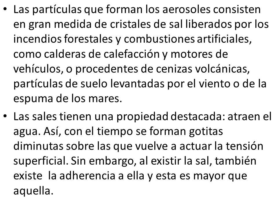 Las partículas que forman los aerosoles consisten en gran medida de cristales de sal liberados por los incendios forestales y combustiones artificiale