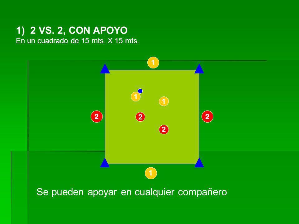 12) 6 vs.6 por equipos En un cuadrado de 40 x 40 mts.