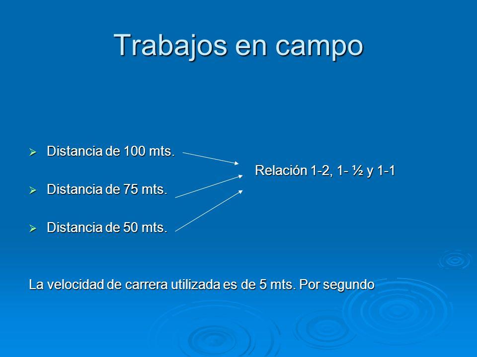 Trabajos en campo Distancia de 100 mts. Distancia de 100 mts. Relación 1-2, 1- ½ y 1-1 Relación 1-2, 1- ½ y 1-1 Distancia de 75 mts. Distancia de 75 m