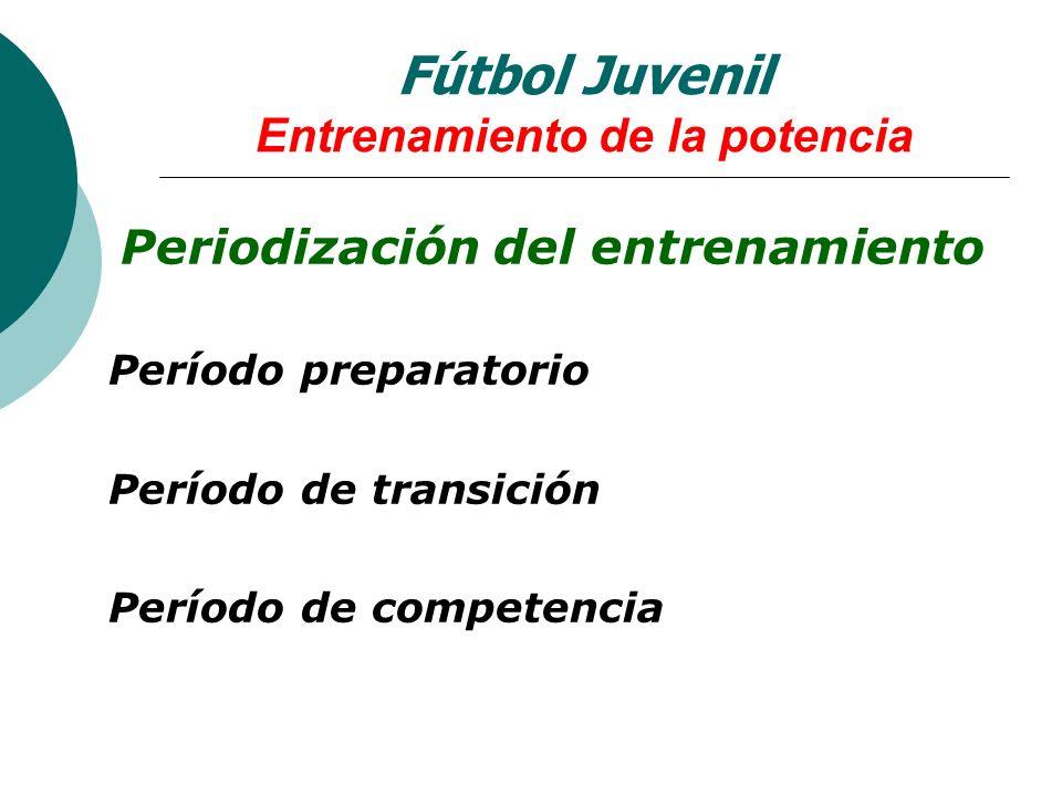 Periodización del entrenamiento Período preparatorio Período de transición Período de competencia Fútbol Juvenil Entrenamiento de la potencia
