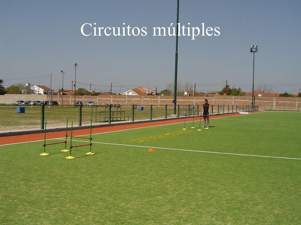 Circuitos múltiples