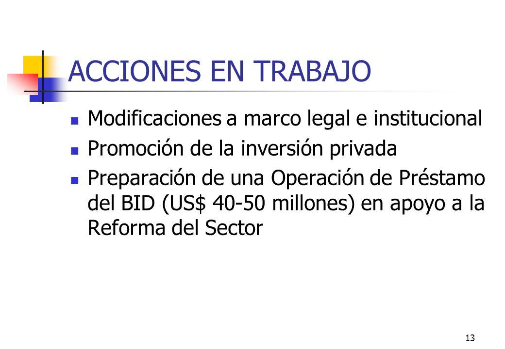 13 ACCIONES EN TRABAJO Modificaciones a marco legal e institucional Promoción de la inversión privada Preparación de una Operación de Préstamo del BID (US$ 40-50 millones) en apoyo a la Reforma del Sector