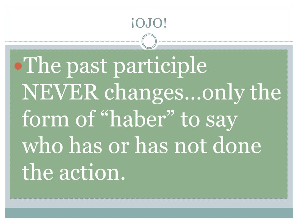 ¡OJO! The past participle NEVER changes…only the form of haber to say who has or has not done the action.
