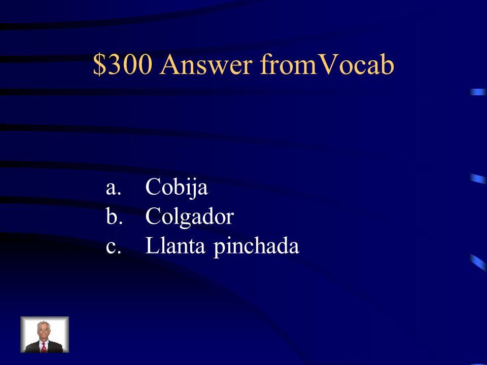 $300 Answer fromVocab a.Cobija b.Colgador c.Llanta pinchada