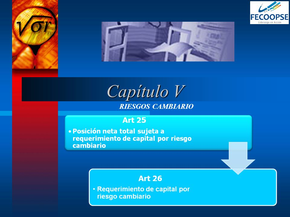RIESGOS CAMBIARIO Capítulo V