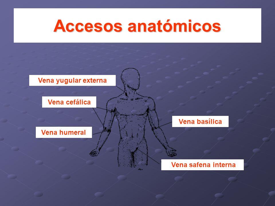 Accesos anatómicos Vena yugular externa Vena basílica Vena safena interna Vena cefálica Vena humeral