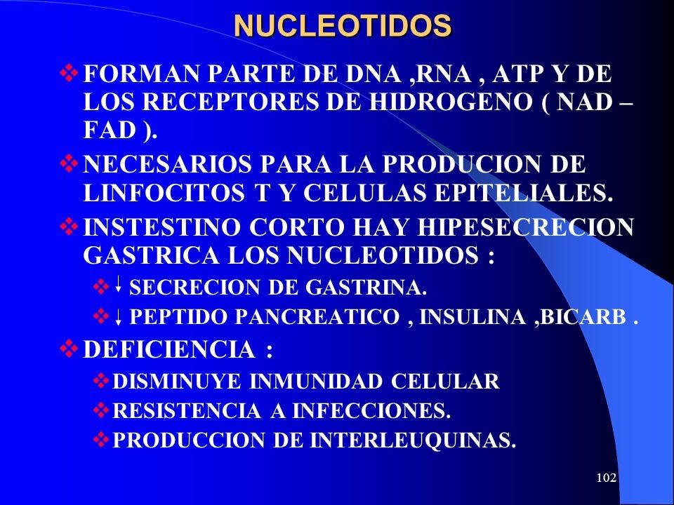 102NUCLEOTIDOS FORMAN PARTE DE DNA,RNA, ATP Y DE LOS RECEPTORES DE HIDROGENO ( NAD – FAD ). NECESARIOS PARA LA PRODUCION DE LINFOCITOS T Y CELULAS EPI