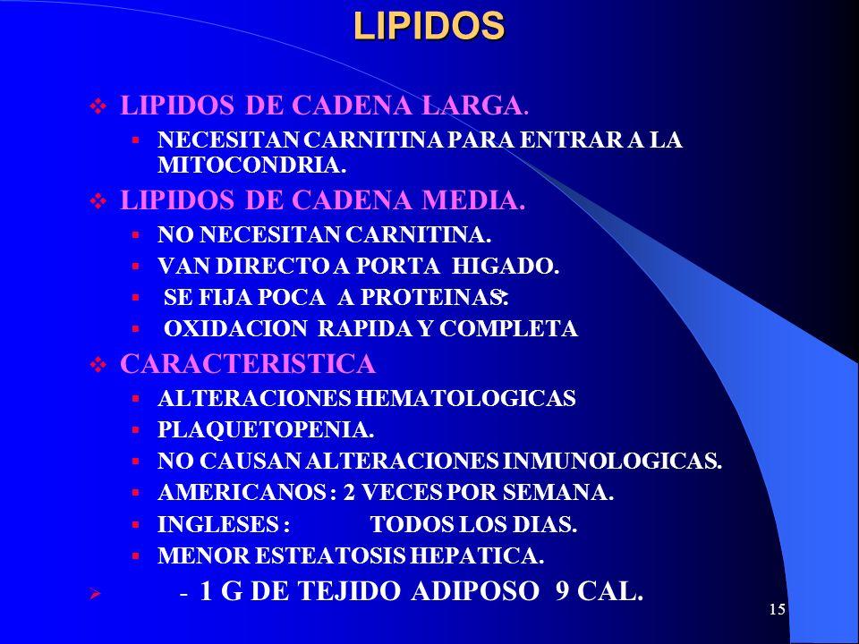 15LIPIDOS LIPIDOS DE CADENA LARGA. NECESITAN CARNITINA PARA ENTRAR A LA MITOCONDRIA. LIPIDOS DE CADENA MEDIA. NO NECESITAN CARNITINA. VAN DIRECTO A PO