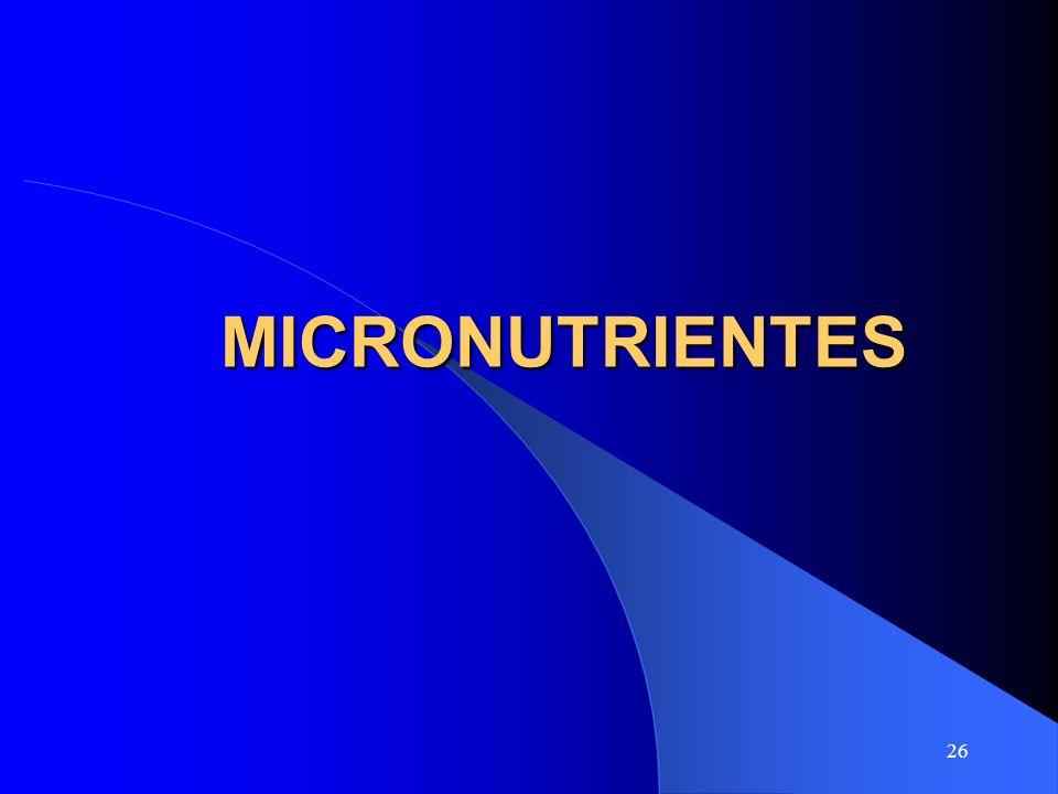 26 MICRONUTRIENTES