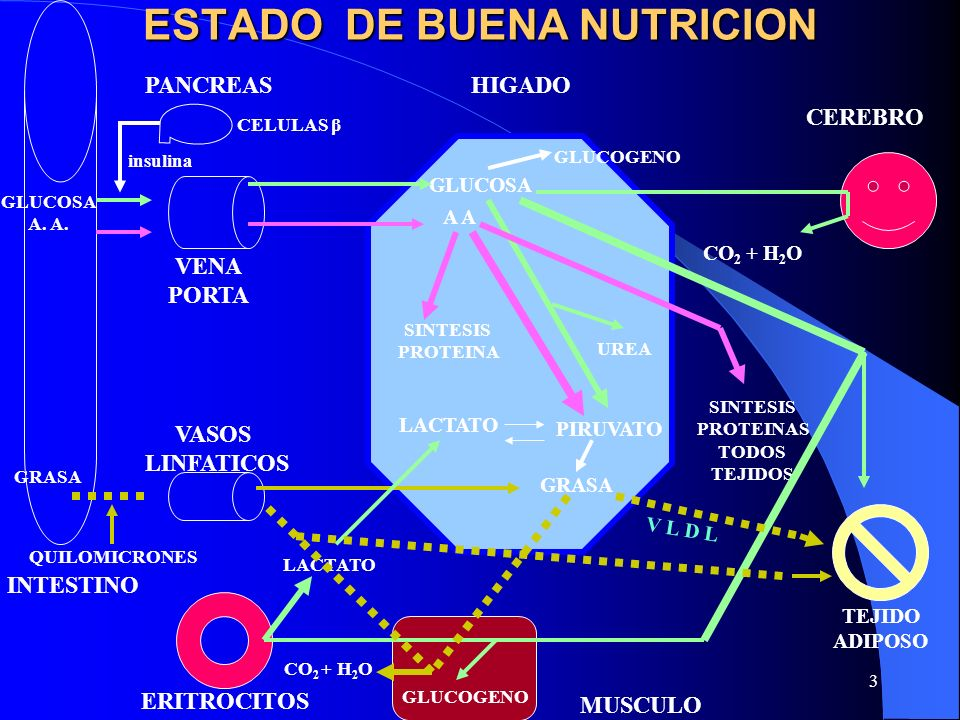 44 FORMULAS PARA REQUERIMIENTOS ENERGETICOS CALORIMETRIA DIRECTA.
