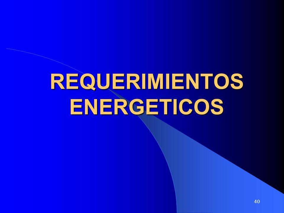 40 REQUERIMIENTOS ENERGETICOS