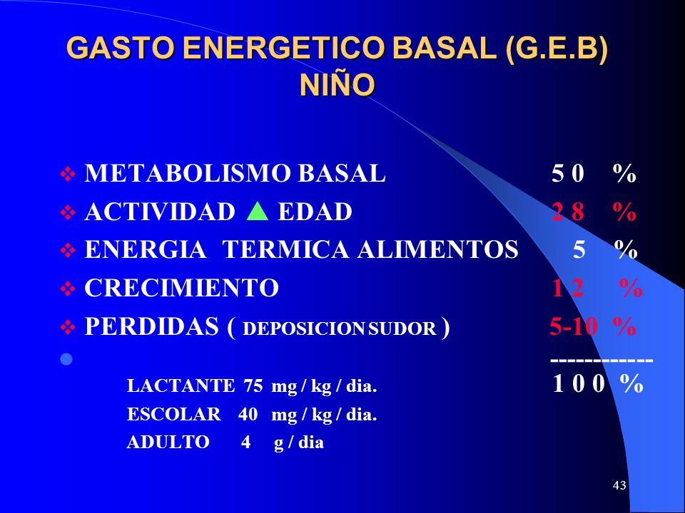 43 GASTO ENERGETICO BASAL (G.E.B) NIÑO METABOLISMO BASAL 5 0 % ACTIVIDAD EDAD 2 8 % ENERGIA TERMICA ALIMENTOS 5 % CRECIMIENTO 1 2 % PERDIDAS ( DEPOSIC
