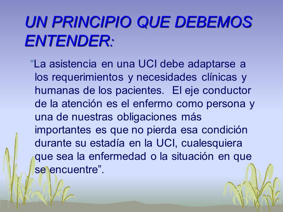 UN PRINCIPIO QUE DEBEMOS ENTENDER : La asistencia en una UCI debe adaptarse a los requerimientos y necesidades clínicas y humanas de los pacientes. El