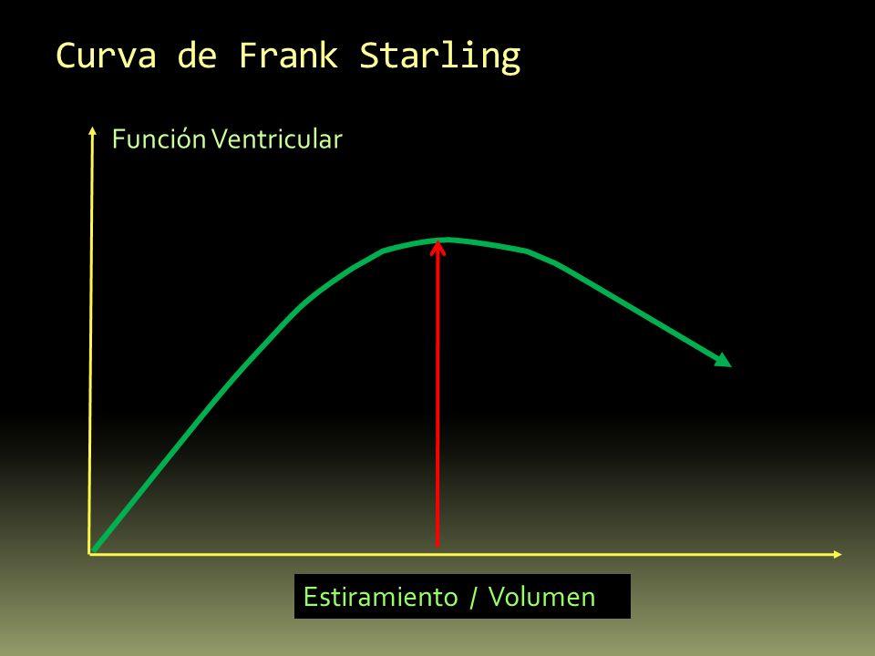 Curva de Frank Starling Función Ventricular Estiramiento / Volumen