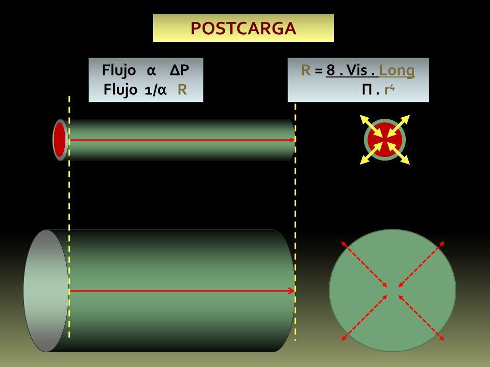 POSTCARGA Flujo α P Flujo 1/α R R = 8. Vis. Long П. r 4