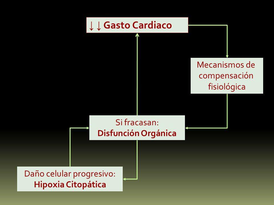 Gasto Cardiaco Mecanismos de compensación fisiológica Si fracasan: Disfunción Orgánica Daño celular progresivo: Hipoxia Citopática